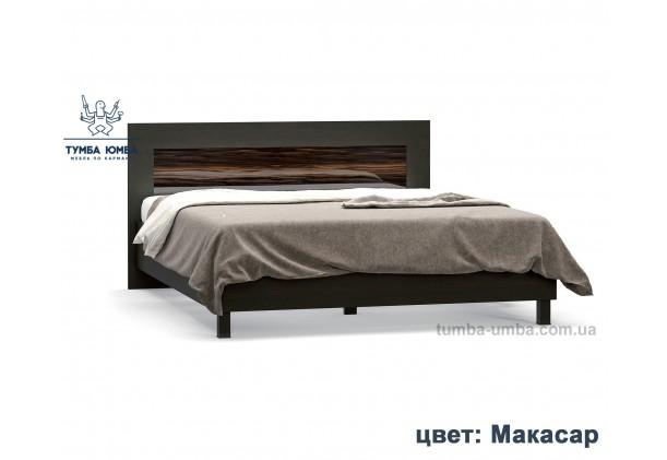 фото стандартная двуспальная кровать Ева 160 см в спальню в цвете макасар лак дешево от производителя с доставкой по всей Украине
