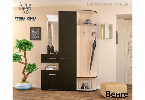 Фото готовая прихожая Интер со шкафом и зеркалом в коридор в цвете венге и ясень светлый дешево от производителя с доставкой по всей Украине