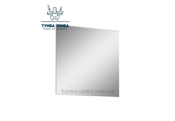 Фото недорогое готовое навесное Зеркало Торино на стену в зал, прихожую, спальню или офис дешево от производителя с доставкой по всей Украине в интернет-магазине TUMBA-UMBA™